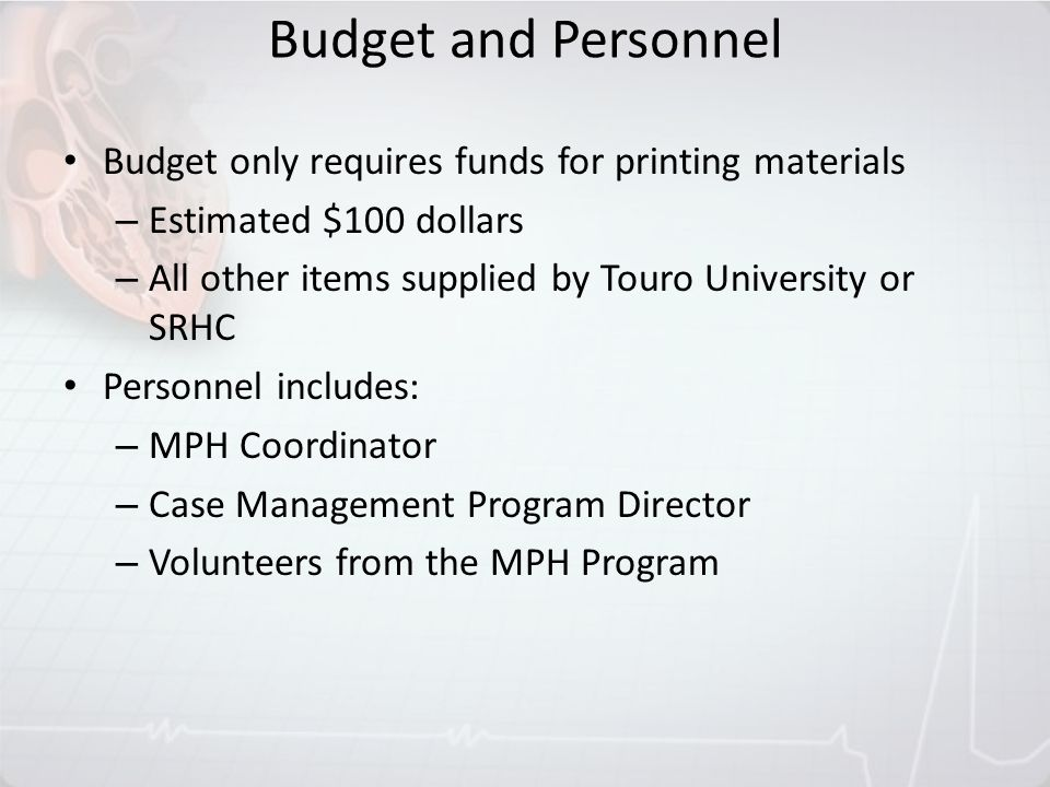 Budget and Personnel Budget only requires funds for printing materials – Estimated $100 dollars – All other items supplied by Touro University or SRHC