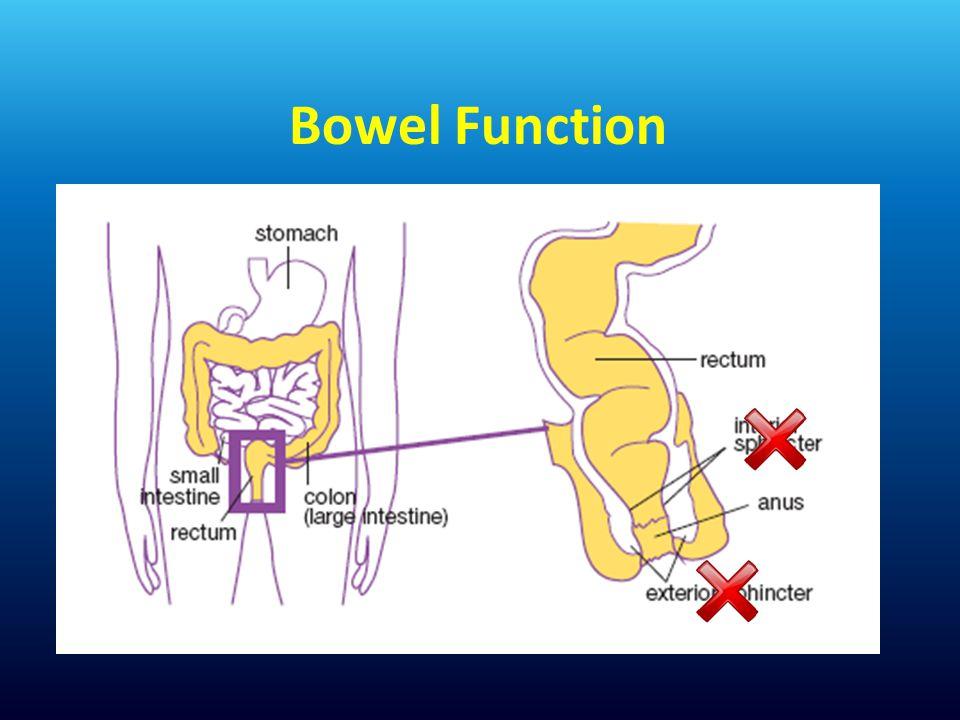 Bowel Function