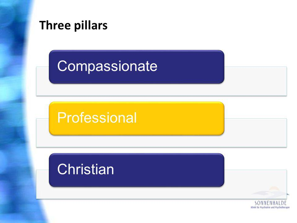 Three pillars CompassionateProfessionalChristian