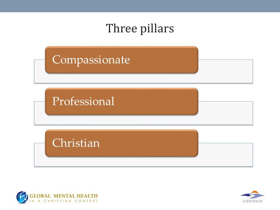 Three pillars CompassionateProfessionalChristian