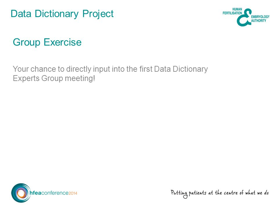 Data Dictionary Project Group Exercise Your chance to directly input into the first Data Dictionary Experts Group meeting!