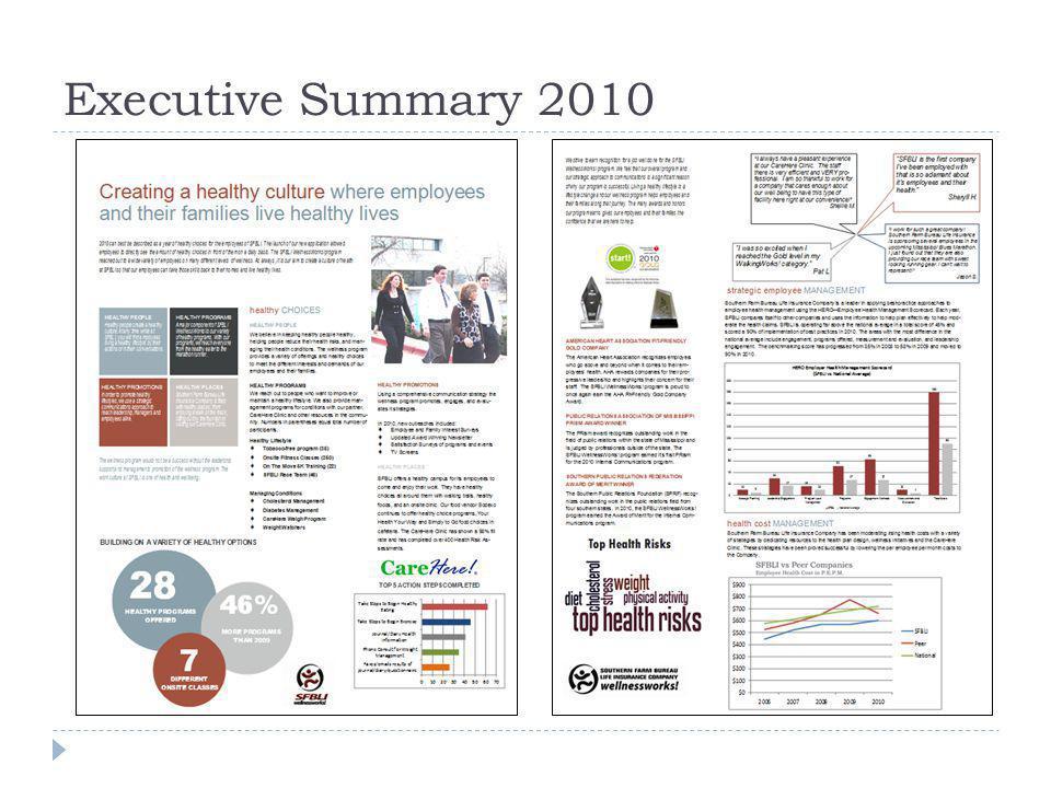 Executive Summary 2010