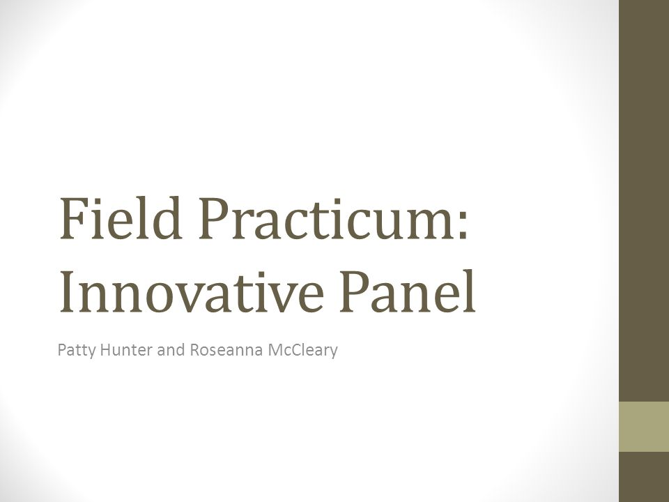 Field Practicum: Innovative Panel Patty Hunter and Roseanna McCleary