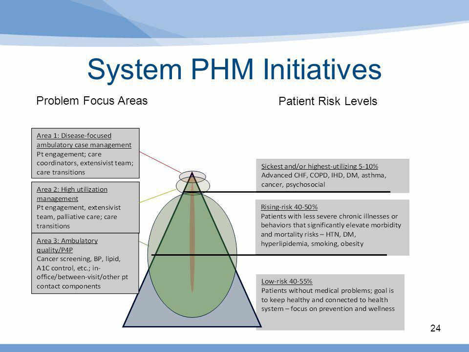 24 System PHM Initiatives Problem Focus Areas Patient Risk Levels