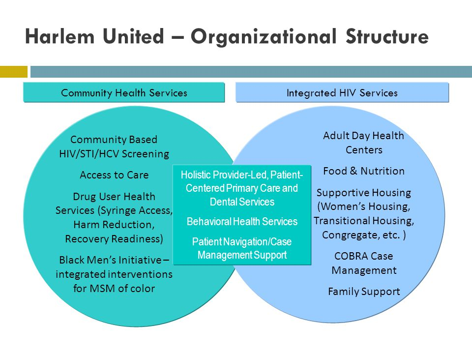 Harlem United – Organizational Structure Integrated HIV ServicesCommunity Health Services Community Based HIV/STI/HCV Screening Access to Care Drug User Health Services (Syringe Access, Harm Reduction, Recovery Readiness) Black Mens Initiative – integrated interventions for MSM of color Adult Day Health Centers Food & Nutrition Supportive Housing (Womens Housing, Transitional Housing, Congregate, etc.
