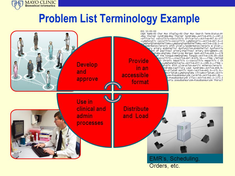 Biomedical Informatics Problem List Terminology Example Develop and approve Provide in an accessible format Distribute and Load Use in clinical and ad