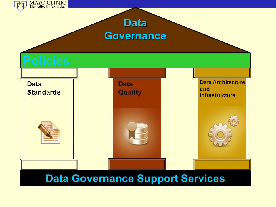 Biomedical Informatics Data Governance Data Standards Data Quality Data Architecture and Infrastructure Data Governance Support Services Policies