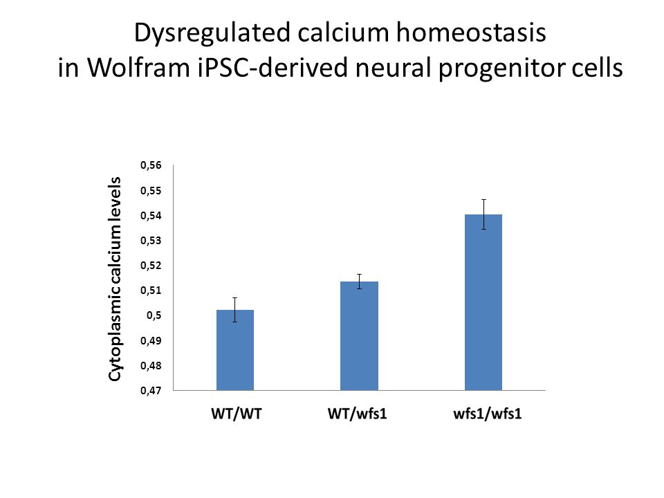 Dysregulated calcium homeostasis in Wolfram iPSC-derived neural progenitor cells