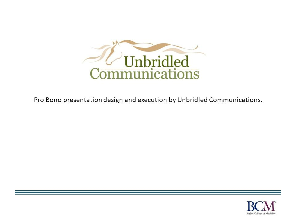 Pro Bono presentation design and execution by Unbridled Communications.