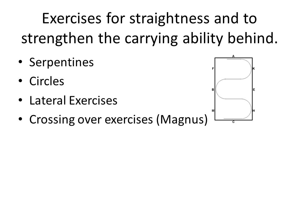 Exercises for straightness and to strengthen the carrying ability behind. Serpentines Circles Lateral Exercises Crossing over exercises (Magnus)