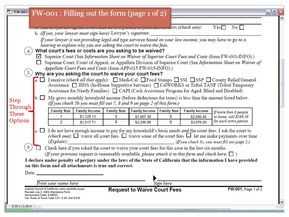 FW-001 : Filling out the form (page 1 of 2) Step Through These Options