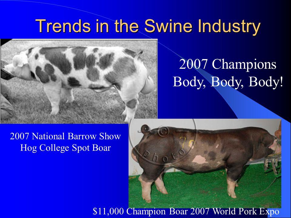 Trends in the Swine Industry $11,000 Champion Boar 2007 World Pork Expo 2007 National Barrow Show Hog College Spot Boar 2007 Champions Body, Body, Bod