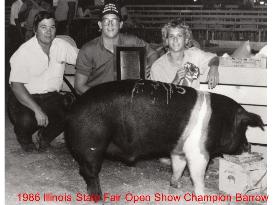 1986 Illinois State Fair Open Show Champion Barrow