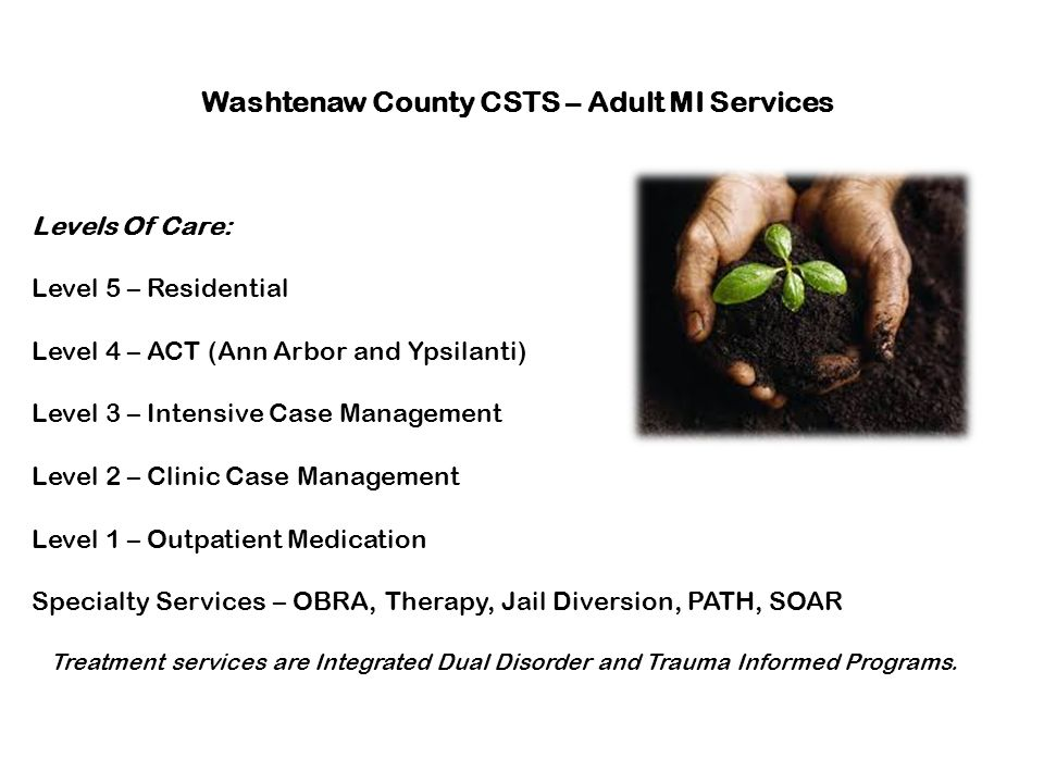 Washtenaw County CSTS – Adult MI Services Levels Of Care: Level 5 – Residential Level 4 – ACT (Ann Arbor and Ypsilanti) Level 3 – Intensive Case Manag