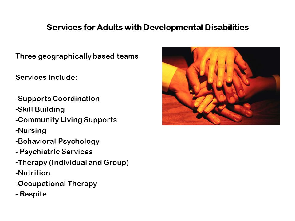 Services for Adults with Developmental Disabilities Three geographically based teams Services include: -Supports Coordination -Skill Building -Communi