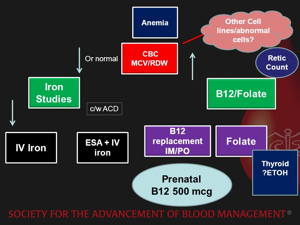 Anemia CBC MCV/RDW CBC MCV/RDW Iron Studies IV Iron B12/Folate ESA + IV iron B12 replacement IM/PO Folate Prenatal B12 500 mcg Thyroid ?ETOH c/w ACD Or normal Retic Count Other Cell lines/abnormal cells?
