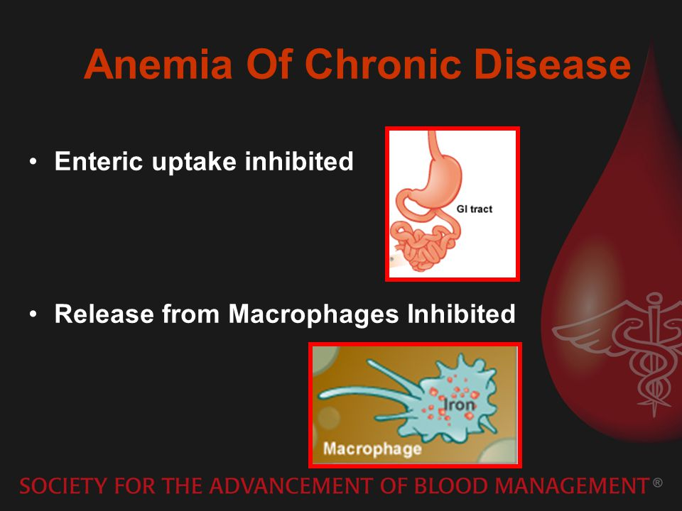 Anemia Of Chronic Disease Enteric uptake inhibited Release from Macrophages Inhibited
