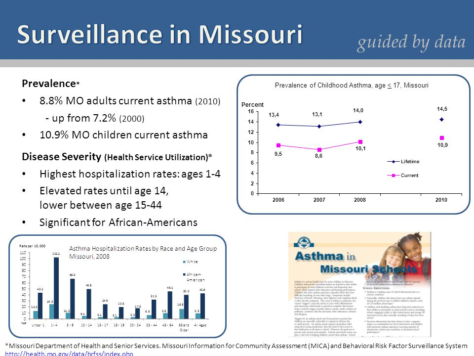 Prevalence * 8.8% MO adults current asthma (2010) - up from 7.2% (2000) 10.9% MO children current asthma Disease Severity (Health Service Utilization)