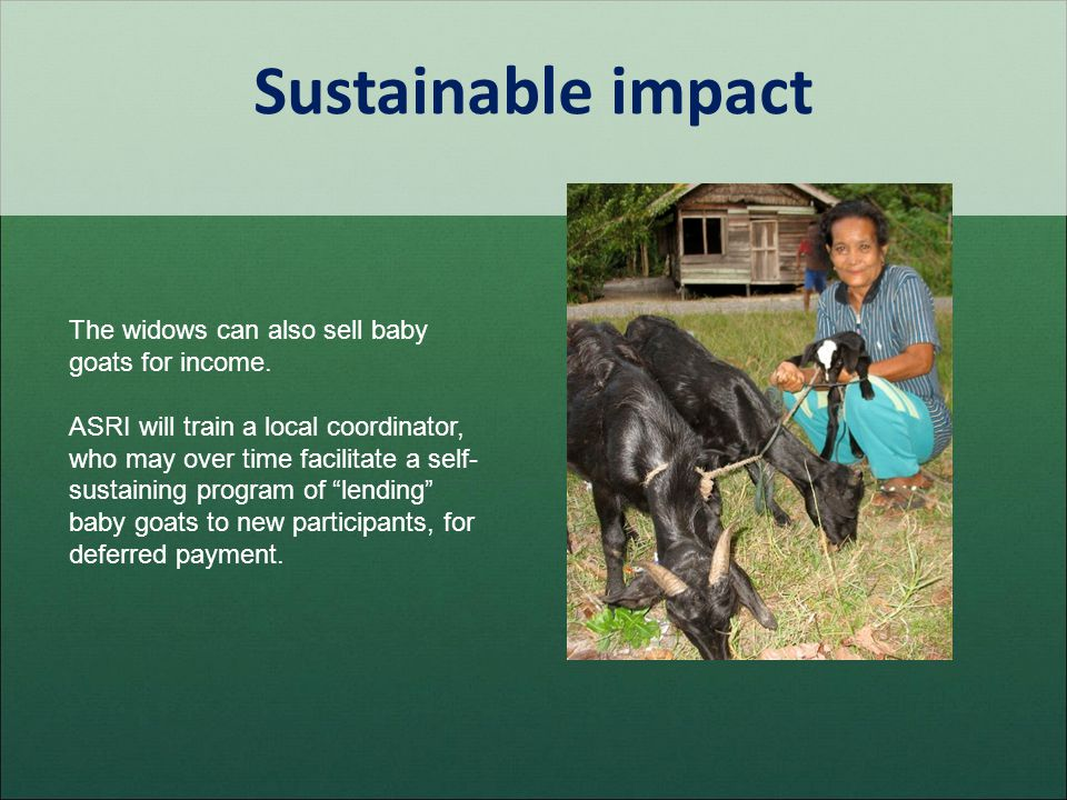 Sustainable impact The widows can also sell baby goats for income. ASRI will train a local coordinator, who may over time facilitate a self- sustainin