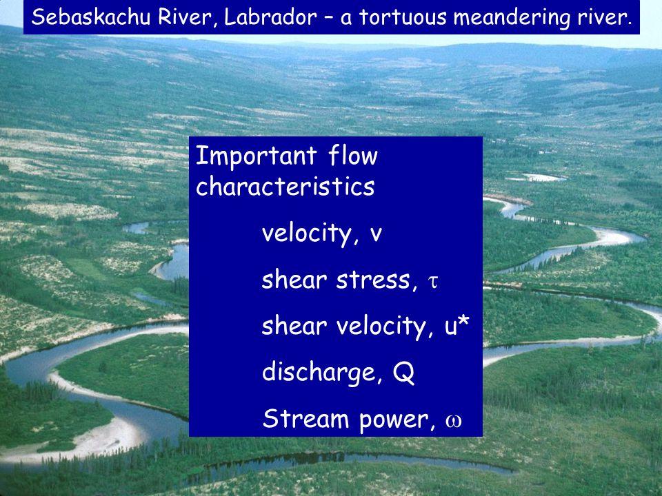 Uniform flow (flow resistance) formulae u = flow velocity, m s -1 C = roughness coefficient R = hydraulic radius, m S = bed slope = shear stress, N m -2 g = accel.