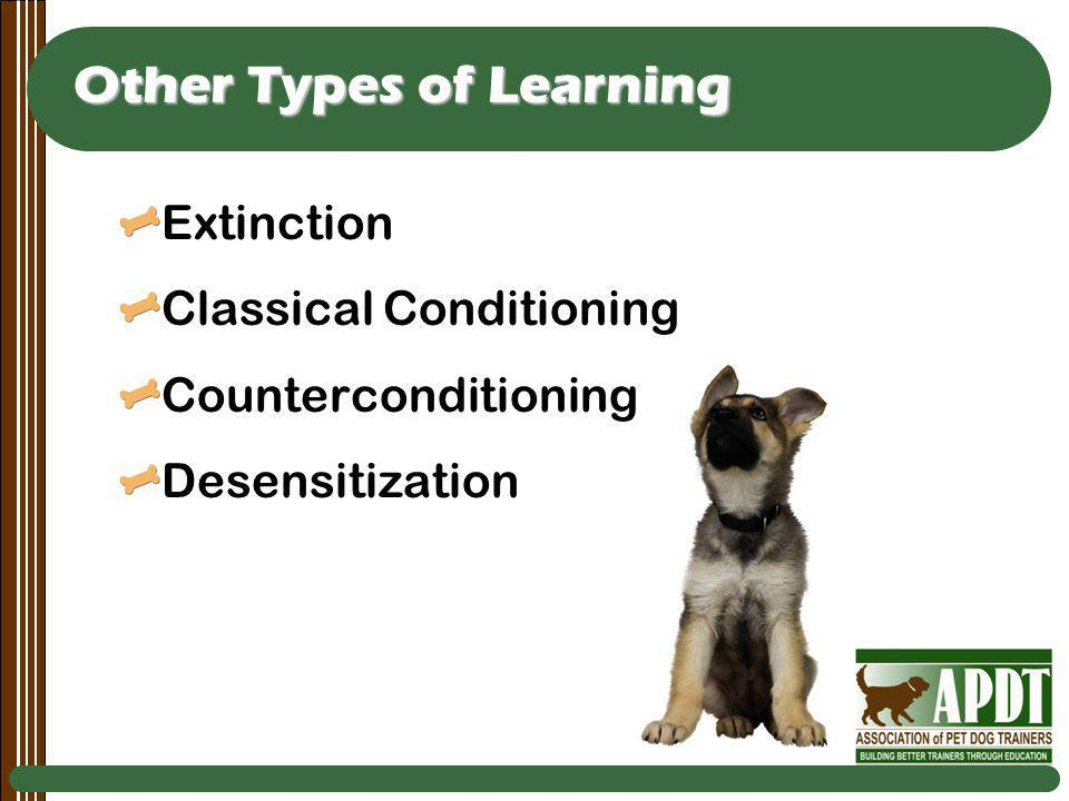 Other Types of Learning Extinction Classical Conditioning Counterconditioning Desensitization