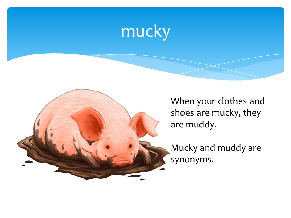 mucky When your clothes and shoes are mucky, they are muddy. Mucky and muddy are synonyms.