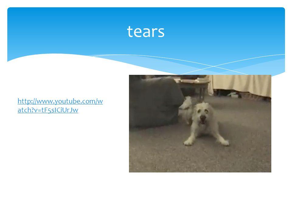 tears http://www.youtube.com/w atch v=tF5sICiUrJw