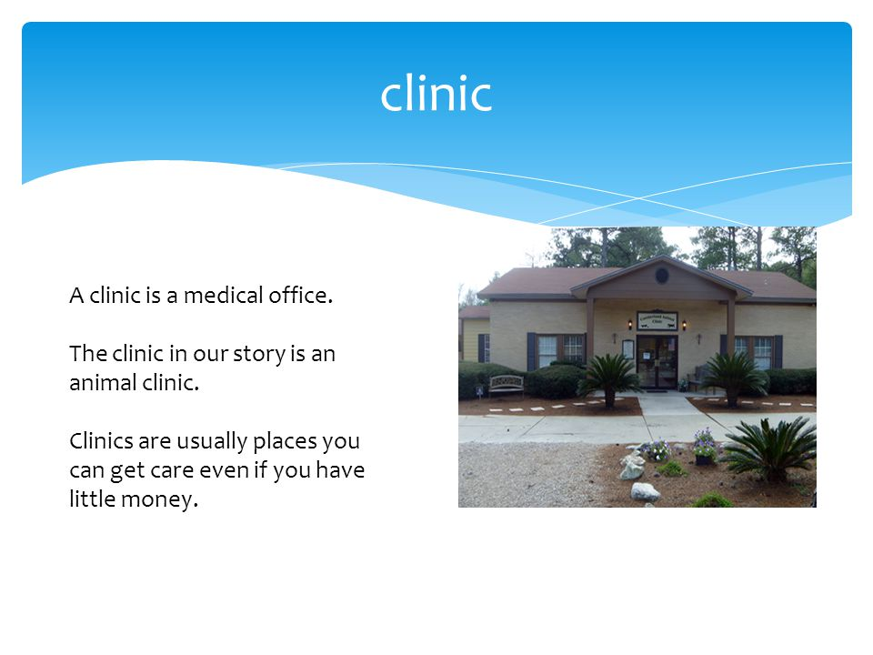 clinic A clinic is a medical office. The clinic in our story is an animal clinic. Clinics are usually places you can get care even if you have little