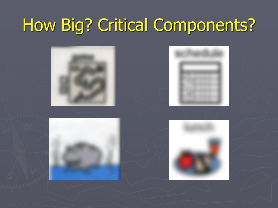 How Big? Critical Components?