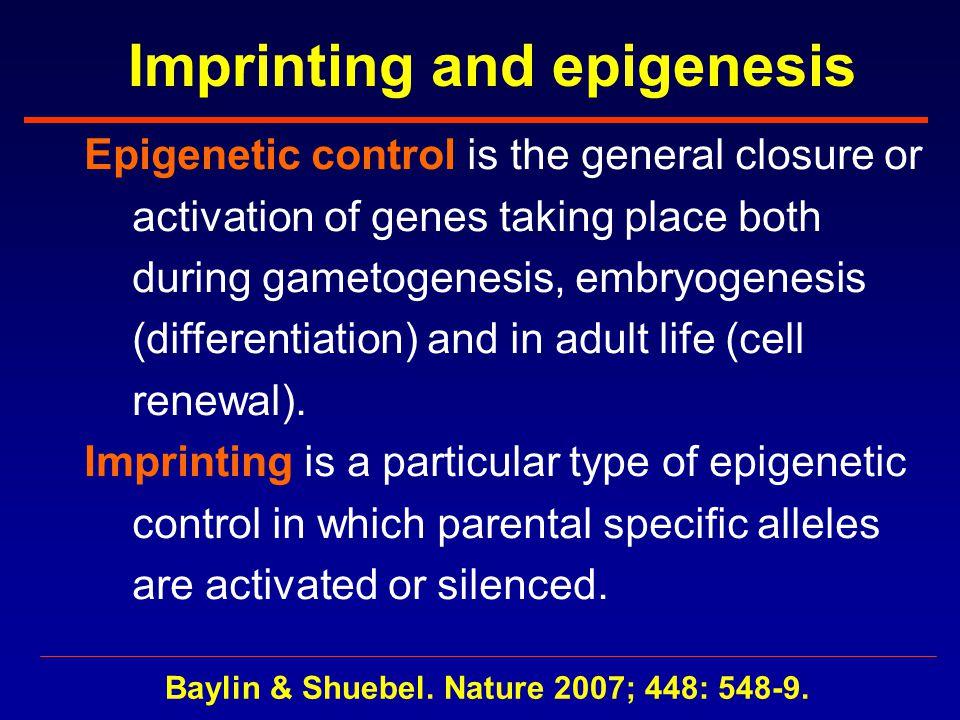 The epigenomic era opens Baylin & Schuebel. Nature 2007; 448: 548-9