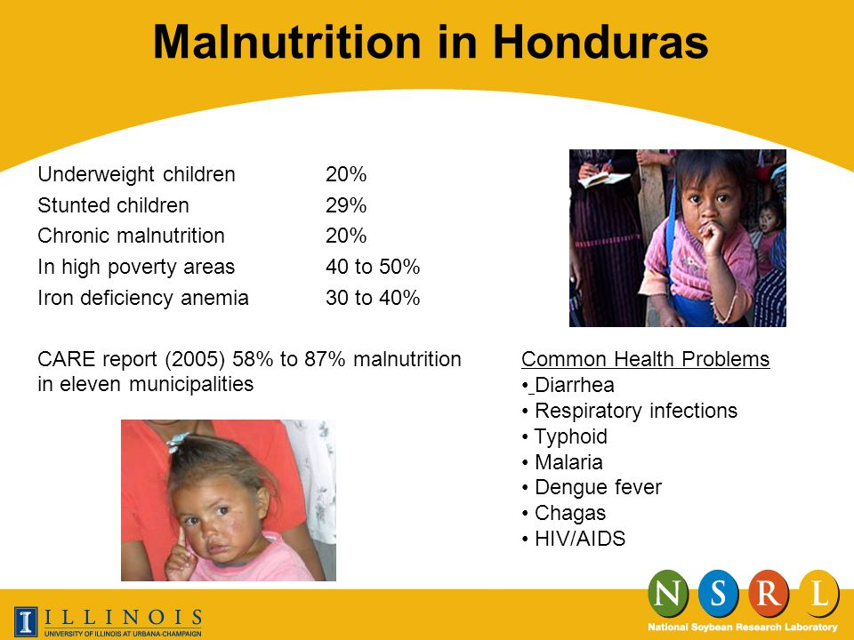 Future Plans Verification of study results in new location –Increased numbers of children –Additional formulations Partnering with a Honduran medical institute –Better understanding of product use and effectiveness Creating system for sustainability