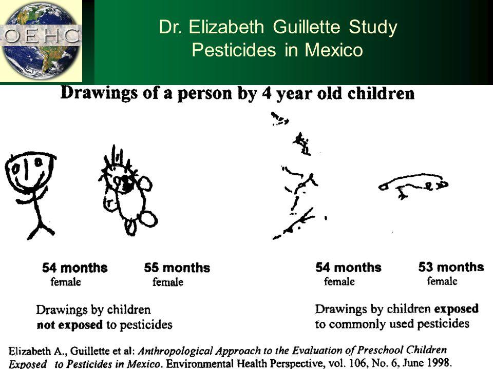 Dr. Elizabeth Guillette Study Pesticides in Mexico