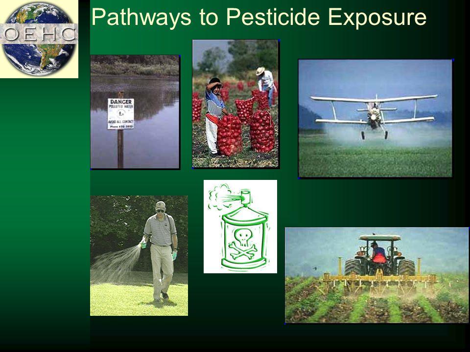 Pathways to Pesticide Exposure