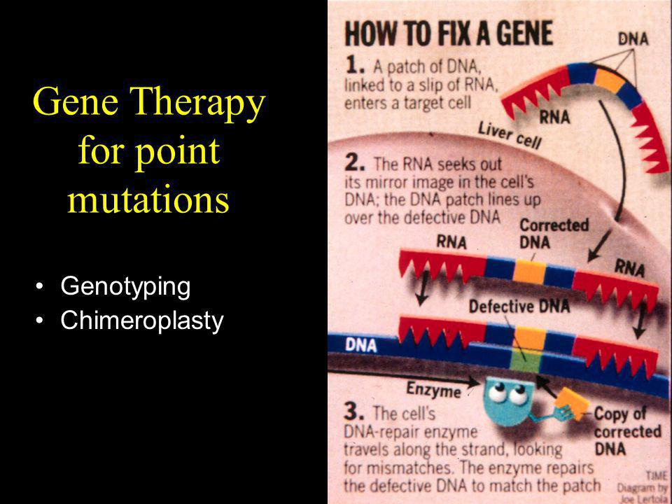 Gene Therapy for point mutations Genotyping Chimeroplasty