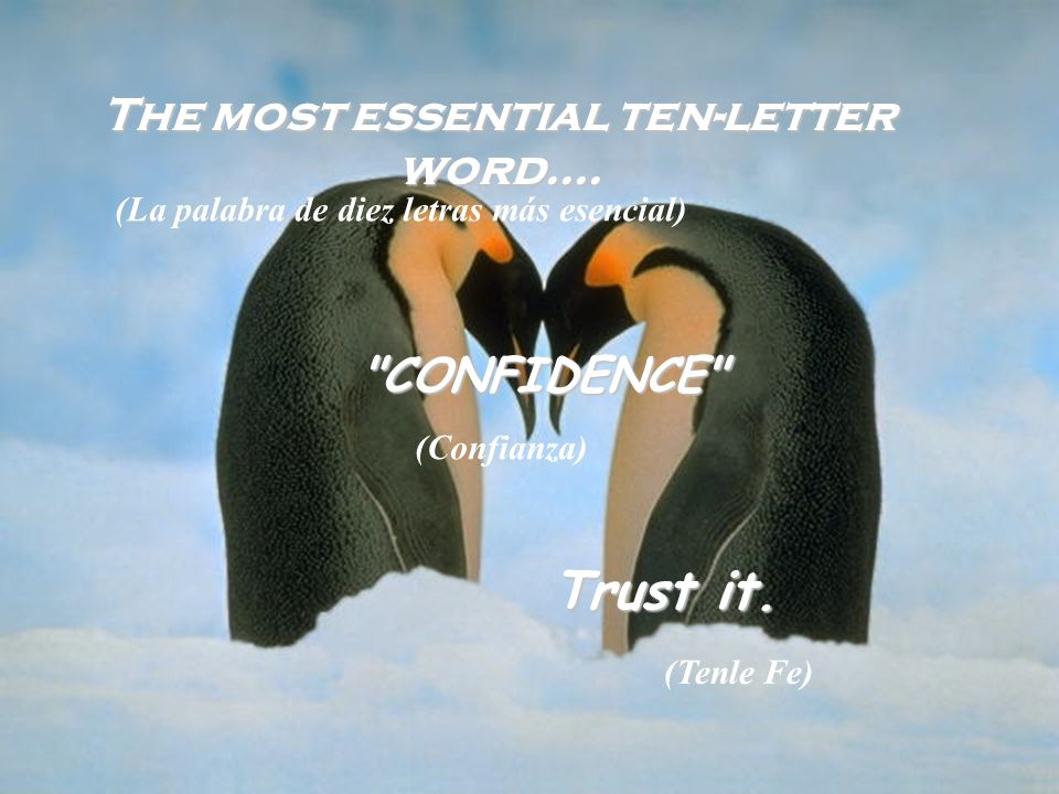 The most essential ten-letter word.... CONFIDENCE Trust it.