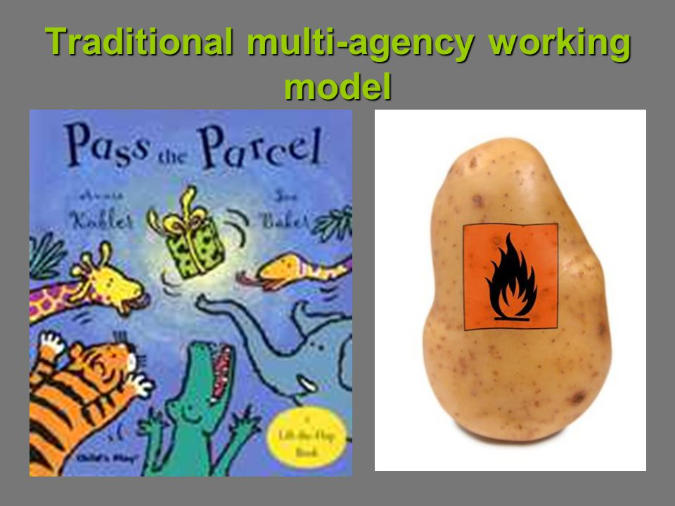 Traditional multi-agency working model