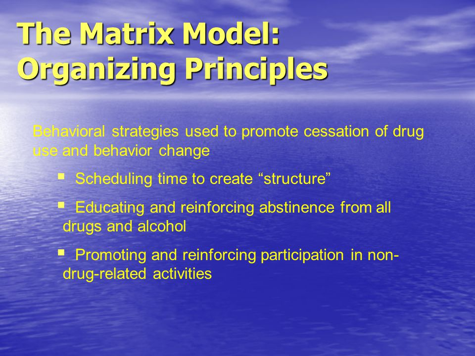 Behavioral strategies used to promote cessation of drug use and behavior change Scheduling time to create structure Educating and reinforcing abstinence from all drugs and alcohol Promoting and reinforcing participation in non- drug-related activities The Matrix Model: Organizing Principles