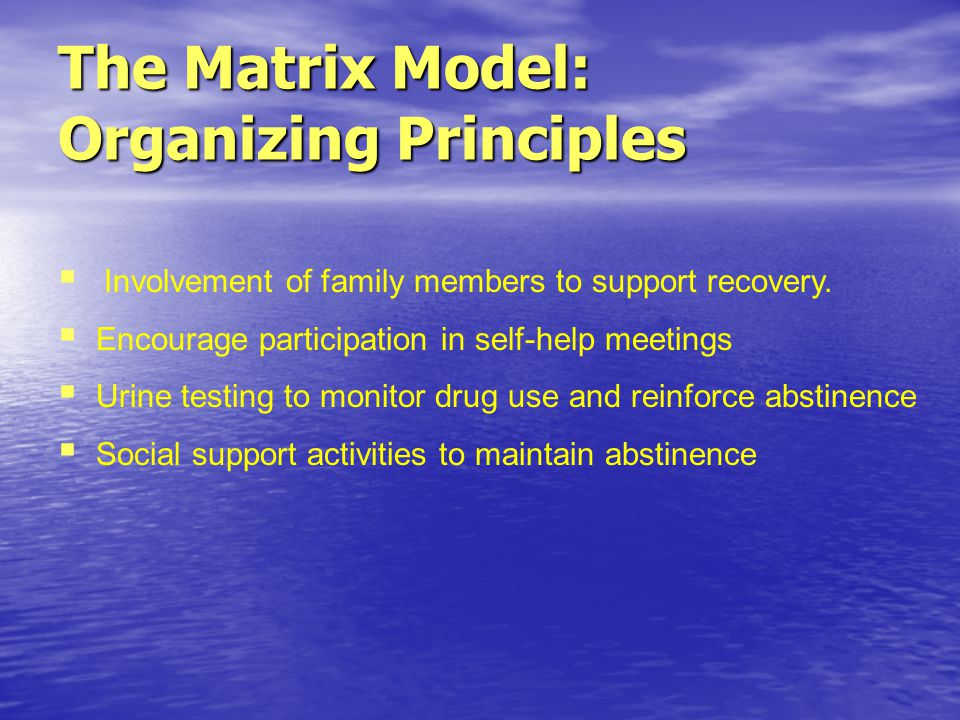Involvement of family members to support recovery.