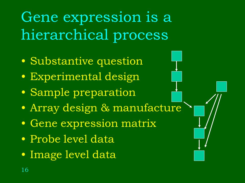 16 Gene expression is a hierarchical process Substantive question Experimental design Sample preparation Array design & manufacture Gene expression matrix Probe level data Image level data