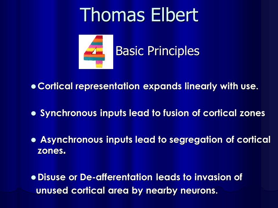 Thomas Elbert Cortical representation expands linearly with use.