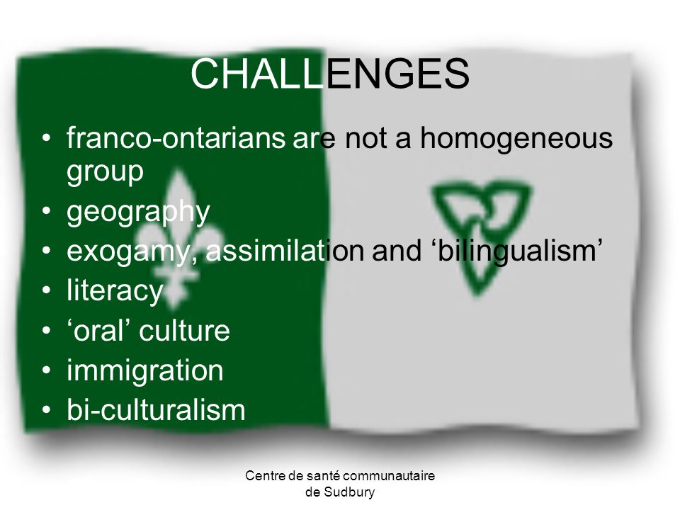 CHALLENGES franco-ontarians are not a homogeneous group geography exogamy, assimilation and bilingualism literacy oral culture immigration bi-cultural