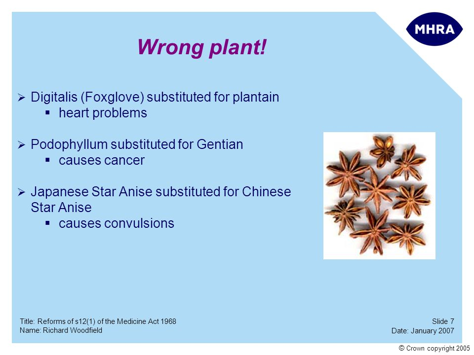 Slide 7 Date: January 2007 Name: Richard Woodfield Title: Reforms of s12(1) of the Medicine Act 1968 © Crown copyright 2005 Wrong plant! Digitalis (Fo