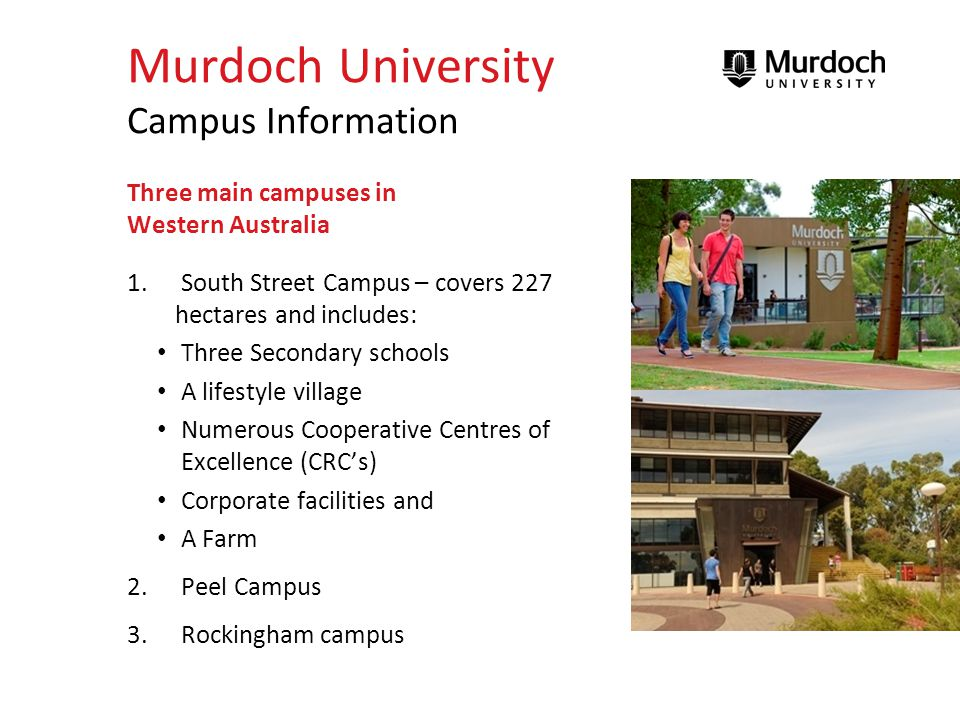 Murdoch University Degrees A strong emphasis on practical experience Four Faculties – (made up of 14 schools) 1.Arts, Education and Creative Media 2.Health Sciences 3.Law, Business and Information Technology 4.