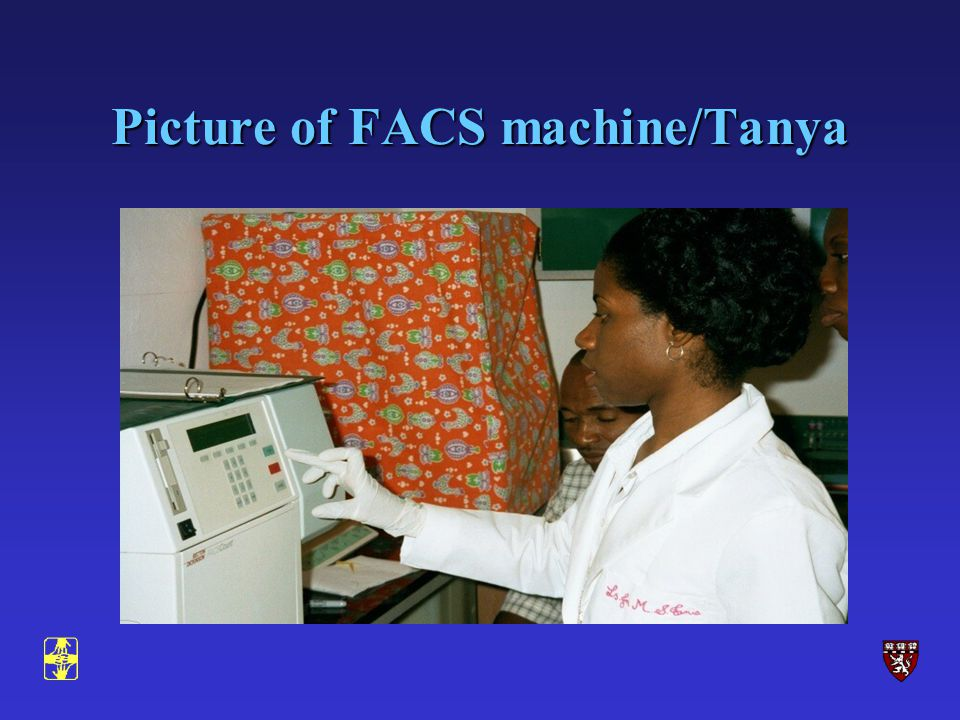 Picture of FACS machine/Tanya