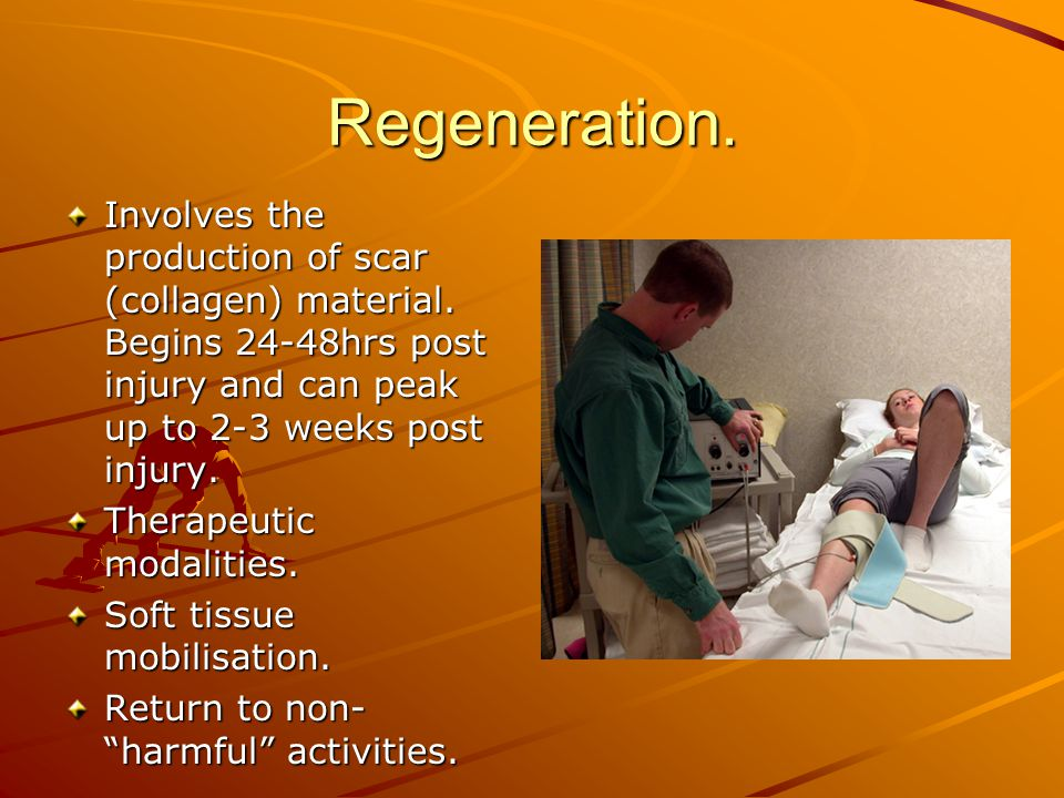 Regeneration. Involves the production of scar (collagen) material. Begins 24-48hrs post injury and can peak up to 2-3 weeks post injury. Therapeutic m