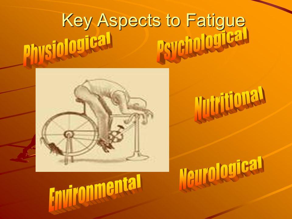 Key Aspects to Fatigue