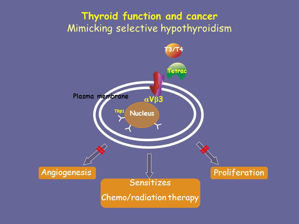Thyroid function and cancer Mimicking selective hypothyroidism V 3 Plasma membrane Nucleus T3/T4 Proliferation Angiogenesis Tetrac Sensitizes Chemo/ra
