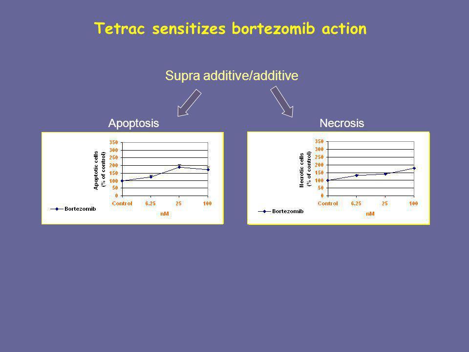 * Supra additive/additive Apoptosis Necrosis Tetrac sensitizes bortezomib action
