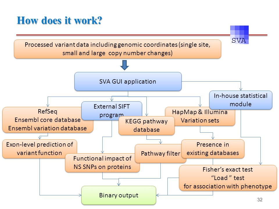 32 Processed variant data including genomic coordinates (single site, small and large copy number changes) SVA GUI application RefSeq Ensembl core dat