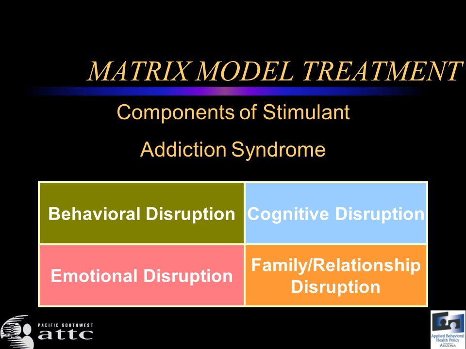 MATRIX MODEL TREATMENT Behavioral DisruptionCognitive Disruption Emotional Disruption Family/Relationship Disruption Components of Stimulant Addiction Syndrome